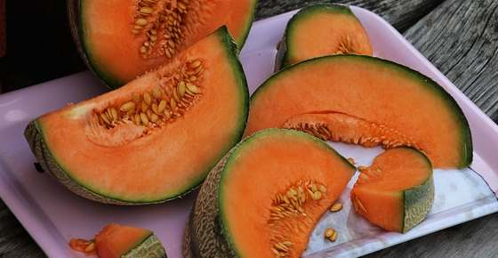 Types Of Melons Different Melon Varieties With Pictures And Names This cantaloupe & orange margaritas recipe is featured in the tequila and mezcal feed along with {cantaloupe margarita} just because a cantaloupe can't elope, doesn't mean he doesn't want a. leafy place